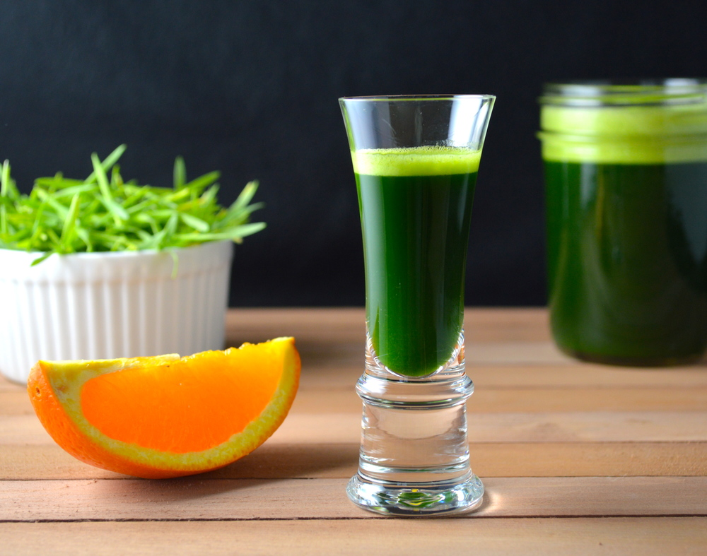 Wheatgrass shots add health to your day