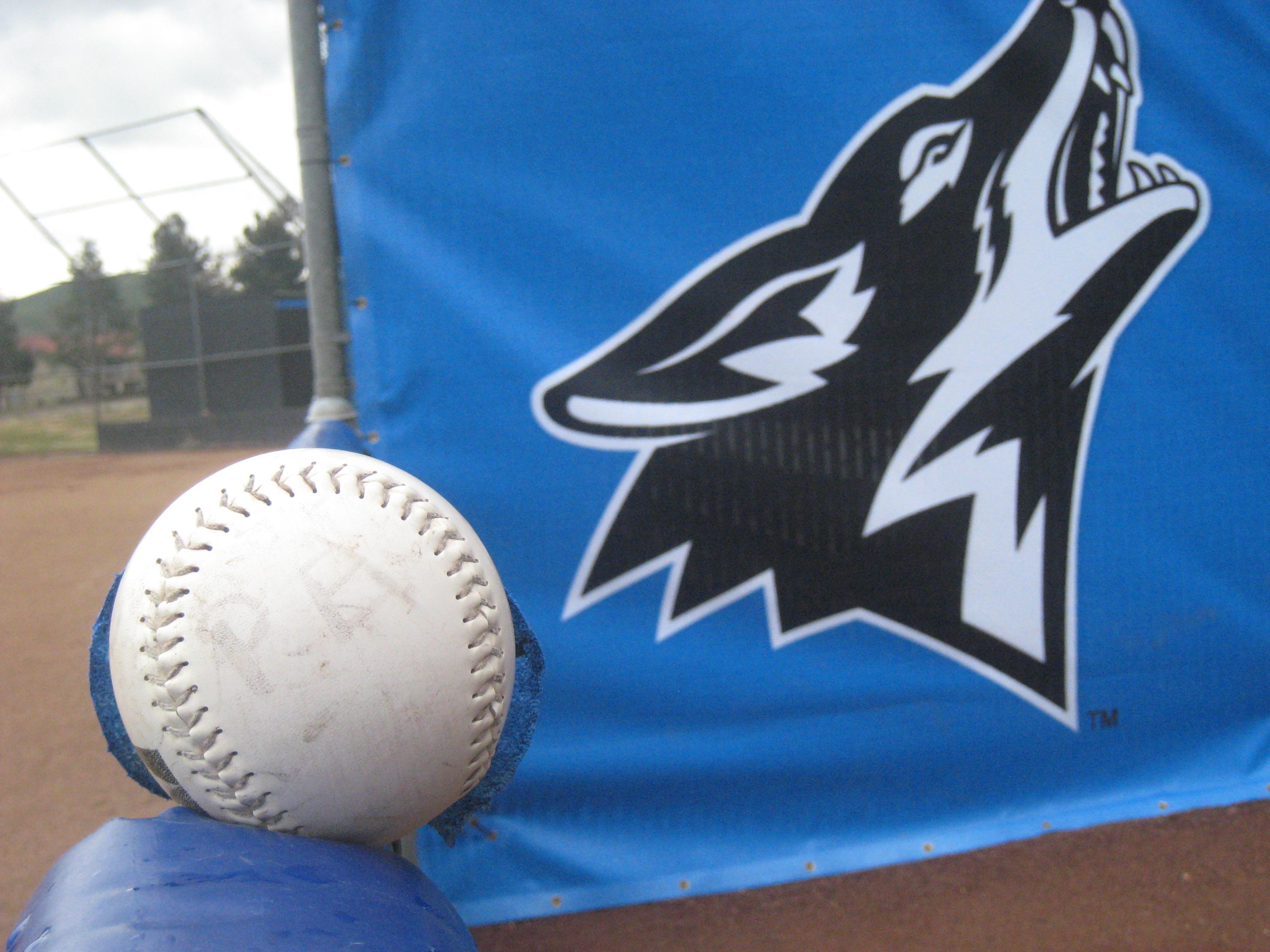 CSUSB softball stumbles in series against CSU Dominguez Hills