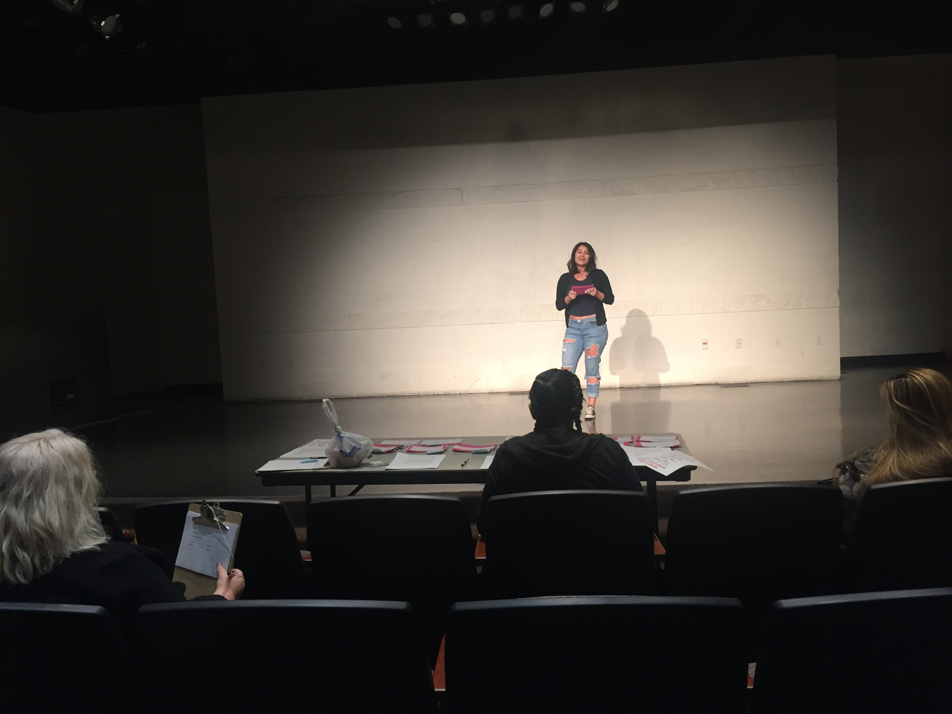 Panza Monologues Auditions