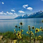 Find Your Park: National Park Adventures