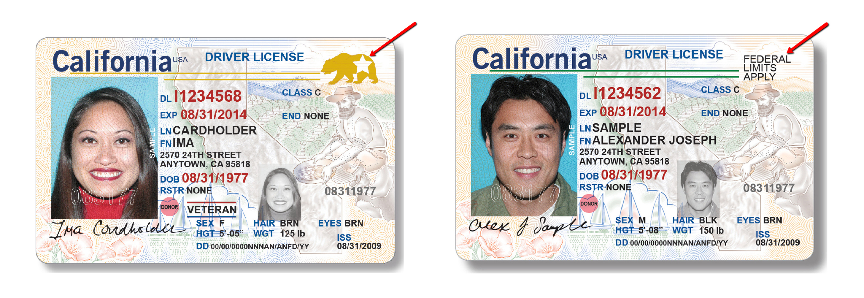 The Csusb Fly To Will Need You Chronicle – Real License Coyote Id Driver's