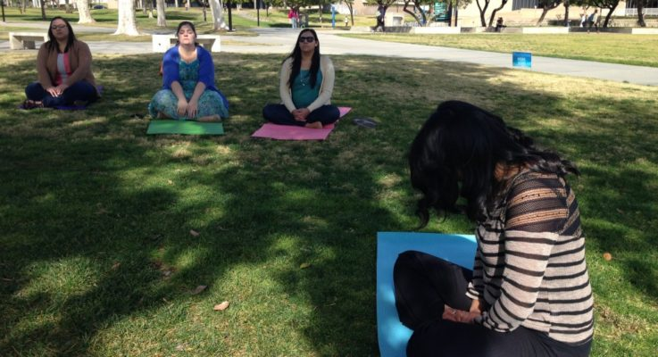 Using Meditation To Be Successful In College